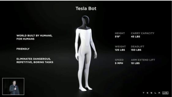 Elon Musk is unleashing humanoid Tesla bots into the world